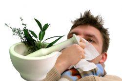 Medicina di erbe per trattare le malattie di inverno