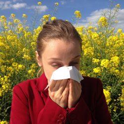 Comment traiter naturellement les allergies