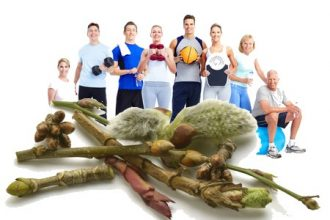 Sport and Gemmotherapy: The benefits of macerates glycerinated on athletes