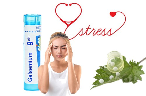 Treating stress and anxiety with Gelsemium homeopathy granules