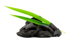 Carvão vegetal ativado para tratar seus distúrbios digestivos