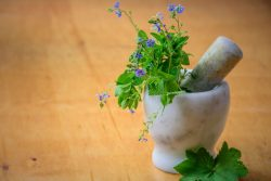 Dimagrante con piante medicinali