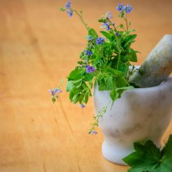 Slimming with medicinal plants