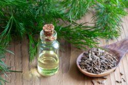 Propiedades farmacológicas del aceite esencial de eneldo