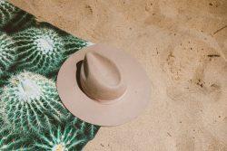 Sommerläuse: die verschiedenen Lösungen, um sie am Strand zu vermeiden
