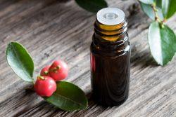 Vorteile von Gaultherie ätherischem Öl